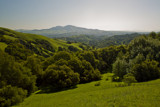 Mt. Diablo from Briones Regional Park by whttiger25, Photography->Landscape gallery