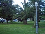 Passeio Alegre Garden VIII by Fergus, Photography->Landscape gallery