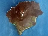 Krakatau by meteor, space gallery