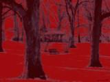 Red China by jojomercury