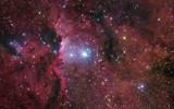 NGC 6188, Starforming Region in Ara by philcUK, space gallery