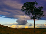 Natures Artwork. by trisbert, Photography->Skies gallery