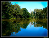 Forrest pond by Larser, Photography->Water gallery