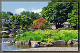 Japanese Garden by Ramad