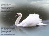 Gracefully Floating On By 2 by Ravenwyng, Photography->Manipulation gallery
