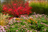 Garden of Plenty #2 by tigger3
