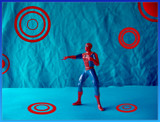 Mini-Spidey by Kevin_Hayden, Photography->General gallery