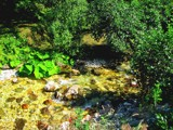 Stream by Tedi, photography->nature gallery