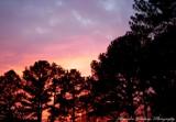 Alabama Sunset by brandondockery, photography->still life gallery