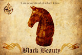 Black Beauty by Kevin_Hayden, Illustrations->Traditional gallery