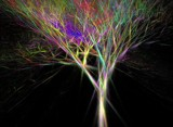 fractal tree by ladyhawk53, abstract->fractal gallery