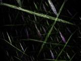 Budding Network by frozenflame, Abstract->Fractal gallery